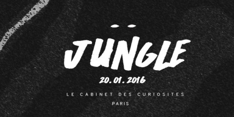 AW_JUNGLE PARTY _ CABINET copie
